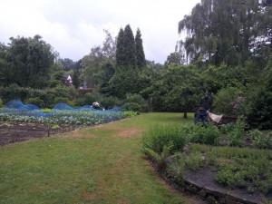 Aufstellung bienenkiste im Schulgarten der Rudolf Steiner Schule Bochum