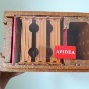 241330 Begattungskästchen Apidea (10)
