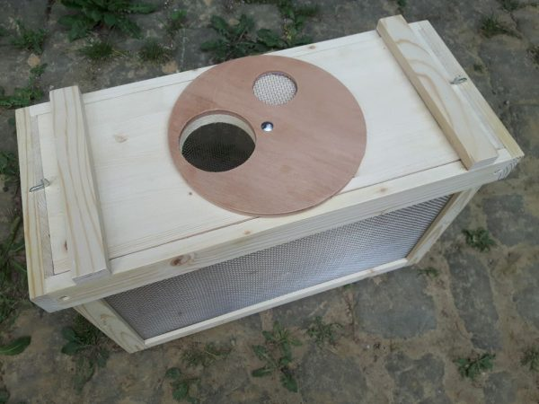 Öffnung für Bienentrichter